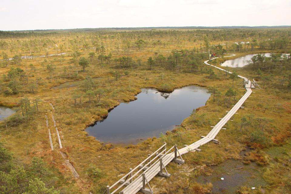 Latvia, Tourism, Outdoor, Scenic, Peacful, Landscape