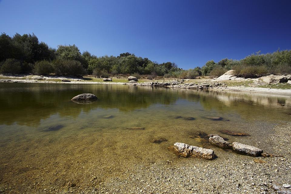 Pond, Water, Nature, Green, Mirroring, Landscape, Lake