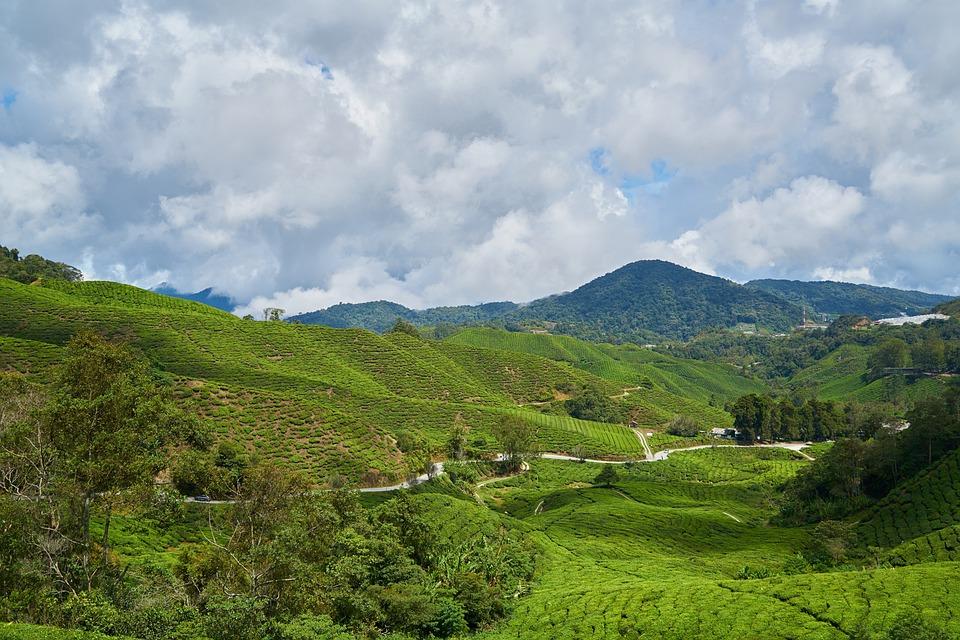 Mountain, Green, Blue, Nature, Landscape, Spring, Sky