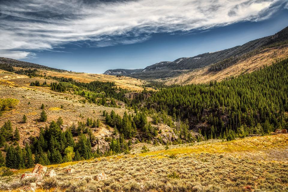 Wyoming, America, Mountains, Landscape, Scenic, Forest