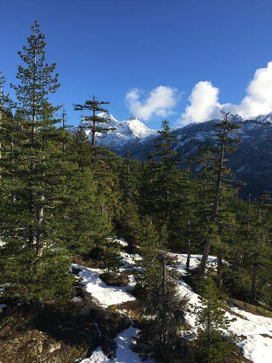 Canada, Mountains, Landscape, Forest, Snow