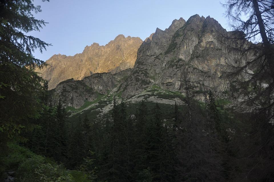 Tatra, Mountains, Forest, Sunrise, Landscape, Tourism