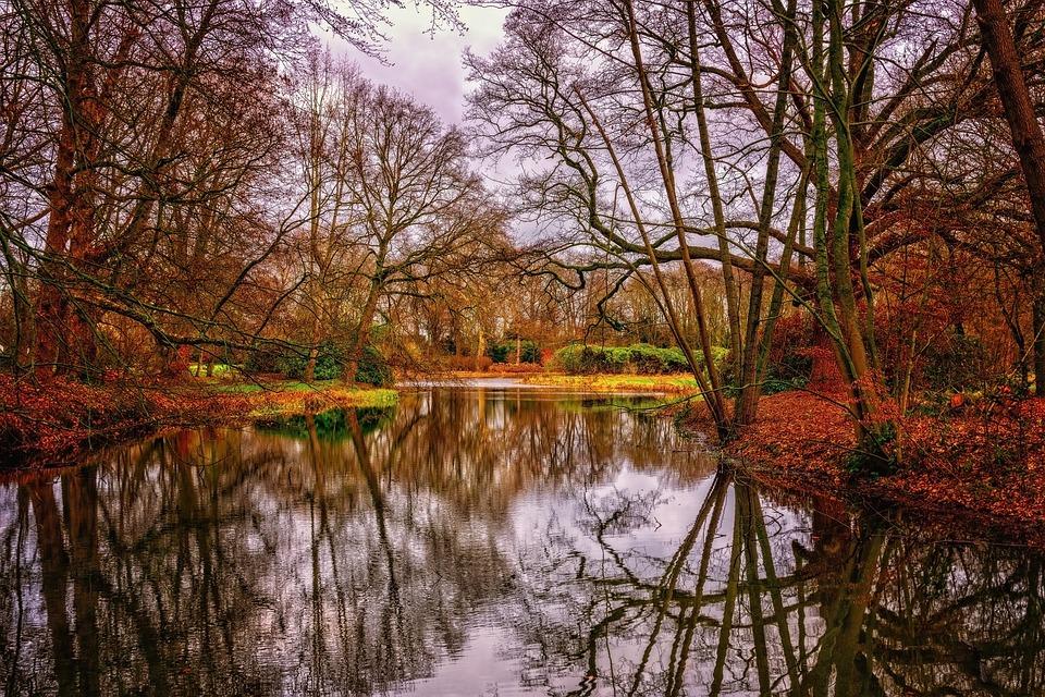 River, Water, Nature, Landscape, Autumn, Mirroring