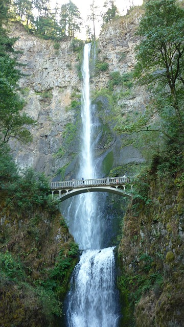Multnomah, Falls, Stone Bridge, Landscape, Nature
