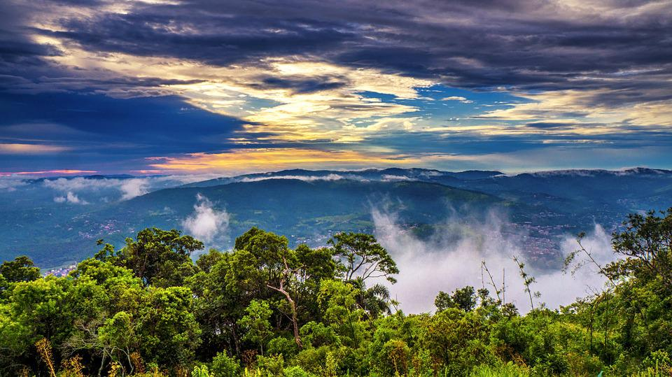 Dawn, Nature, Forest, Sky, Landscape, Tree, Clouds