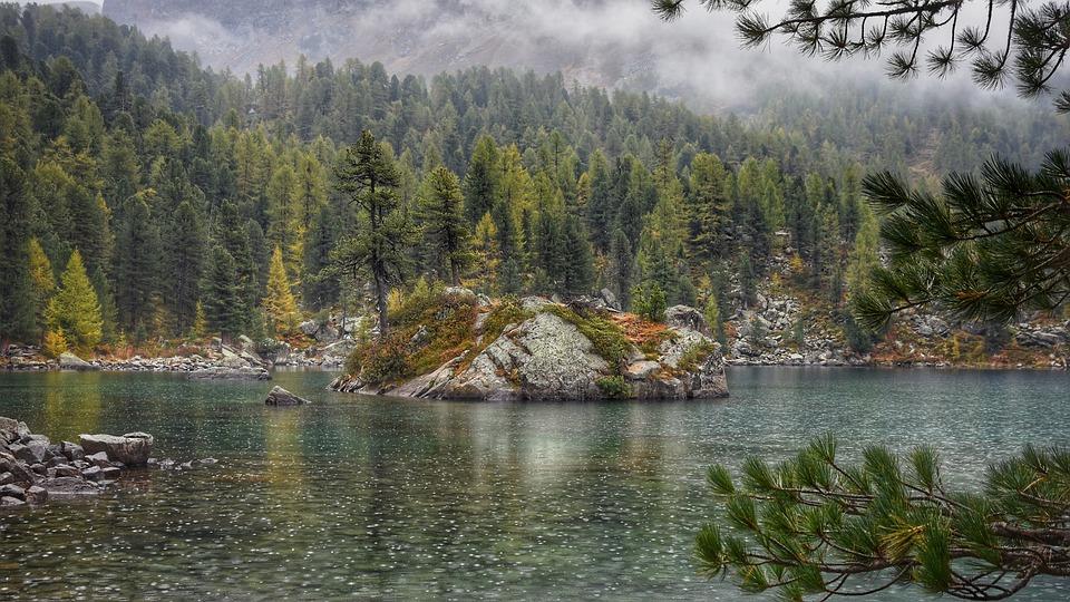 Lake, Landscape, Trees, Nature, Bergsee, Larks