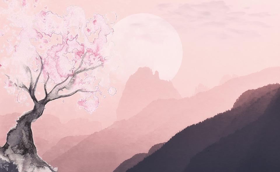 Landscape, Nature, Tree, Wallpaper For Girls