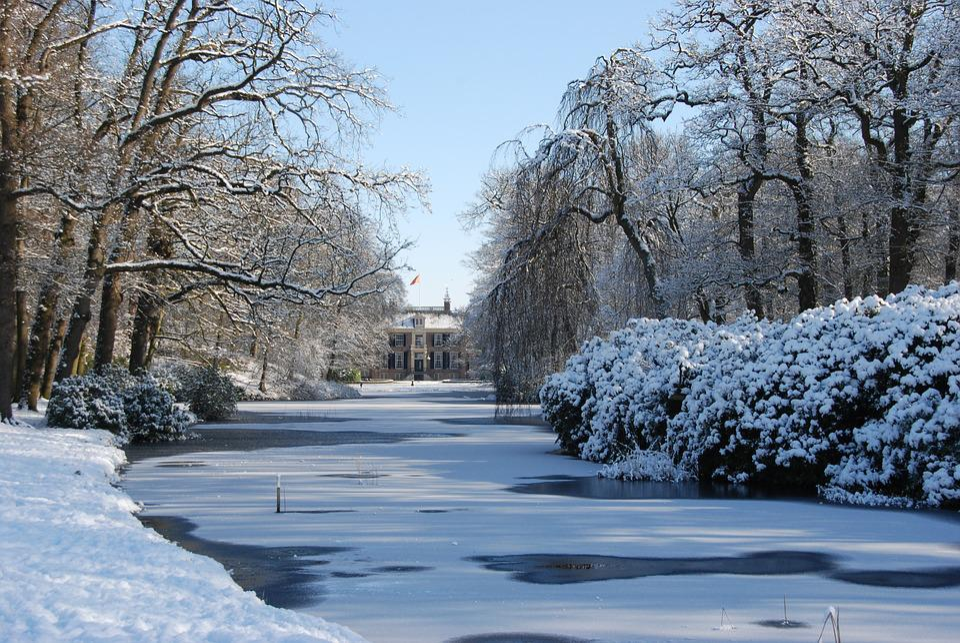 Landscape, Nature, Winter, Ice, Freeze, Snow, Tree