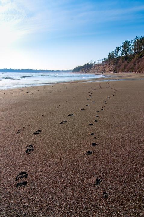 Beach, Landscape, Nature, Nobody, Ocean