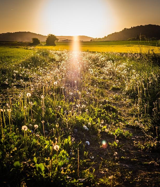 Nature, Landscape, Sunset, Field, Dawn, Panorama, Sun