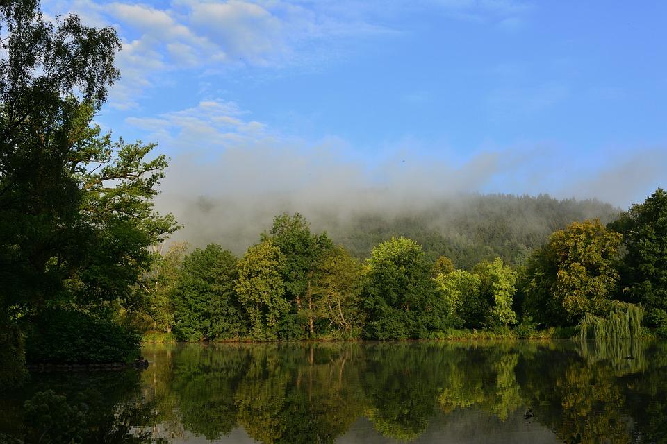 Landscape Park, Fog, Sunrise, Nature, Trees