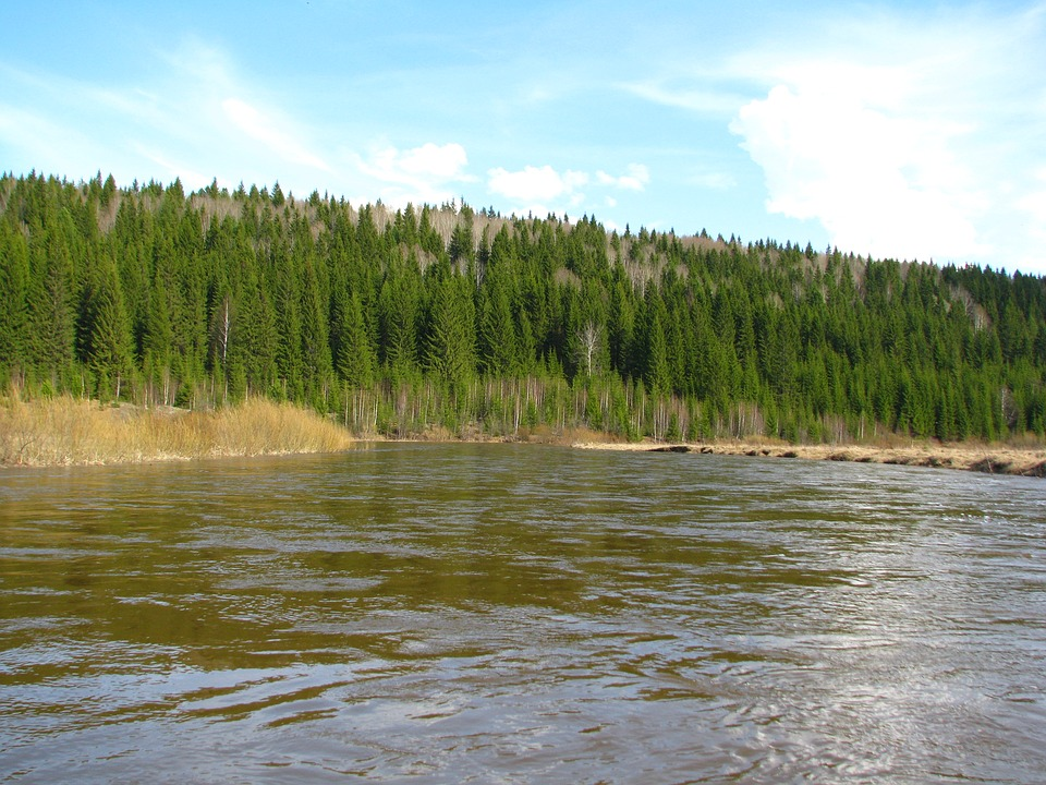 The River Koiva, Forest, Nature, Perm Krai, Landscape