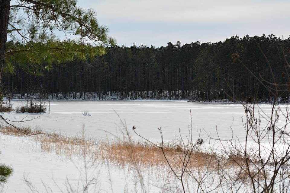 Frozen, Lake, Pond, Snow, Nature, Landscape, White