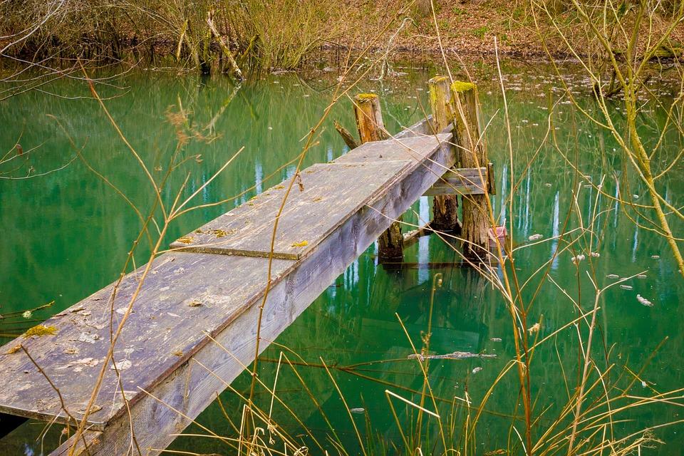 Web, Lake, Pond, Landscape, Nature, Waters
