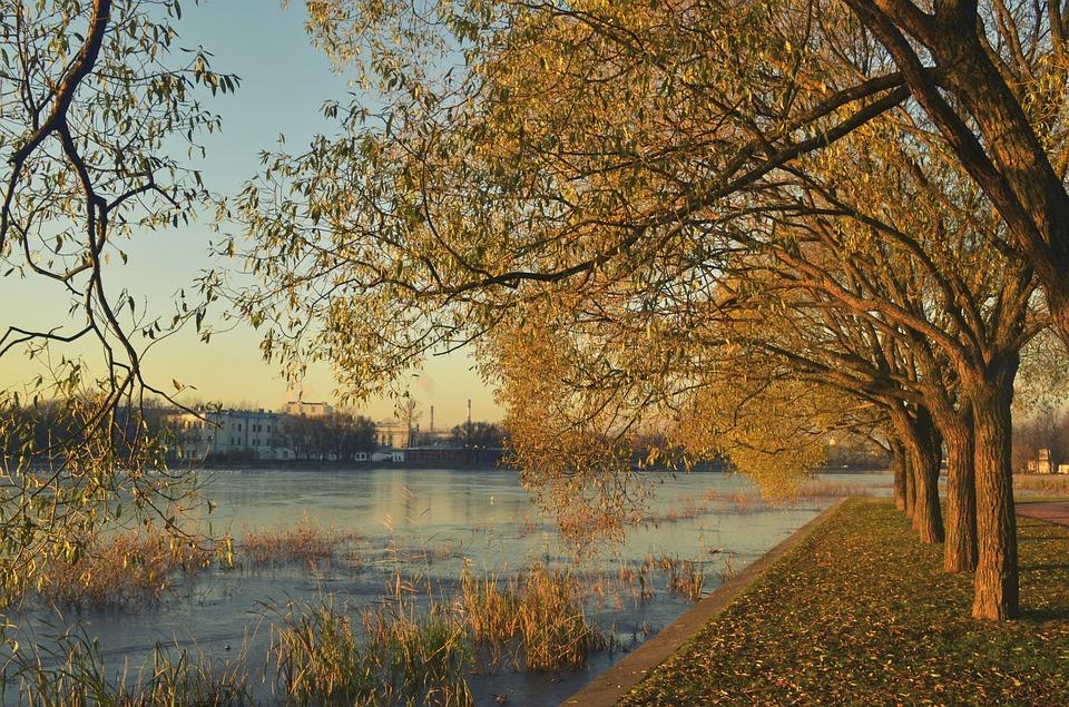 Autumn, River, Trees, Landscape, Nature, Quiet River