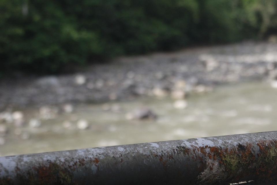 River, Nature, Landscape, Ants, Stones, Amazonia, Water