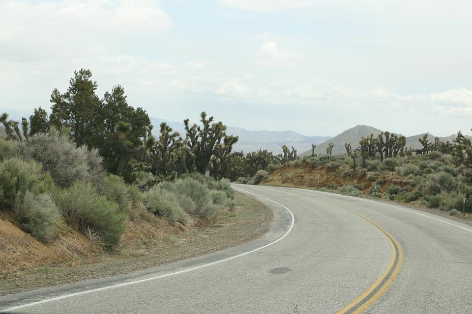 Road, Nature, Travel, Landscape, Buitenweg, Environment