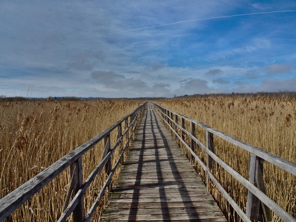 Landscape, Sky, Lake, Fence
