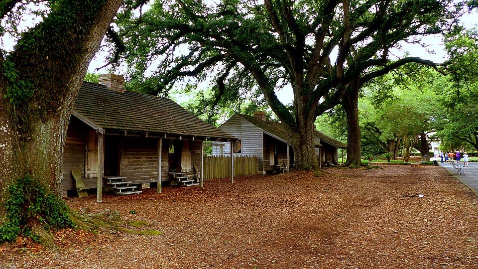 Cabins, Slaves, Trees, Foliage, Landscape, Nature