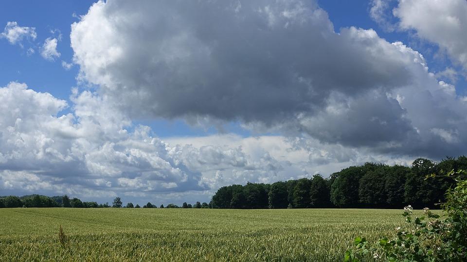 Summer 2016, Clouds, Landscape, Cornfield