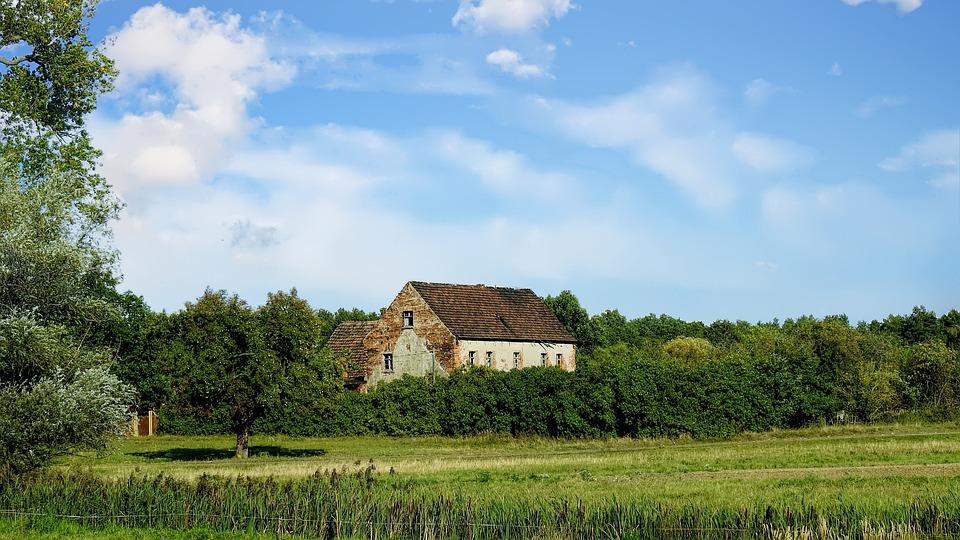 Landscape, Nature, Summer, Rural, Grass