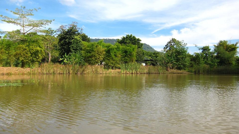 Thailand, River, Shore, Landscape, Nature, Asia
