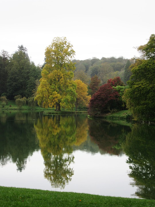 Trees, Lake, Reflection, Water, Landscape, Autumn