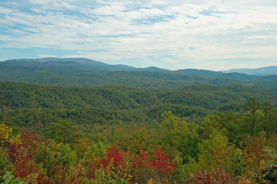 Tennessee, Landscape, Mountains, Trees, Peaceful