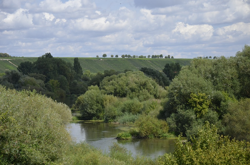 Main, River, Trees, Nature, Water, Landscape, Clouds