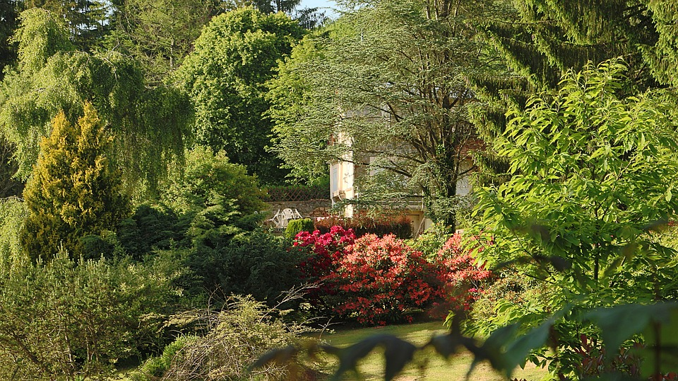 House, Landscape, France, Tree, Morvan, Vegetation