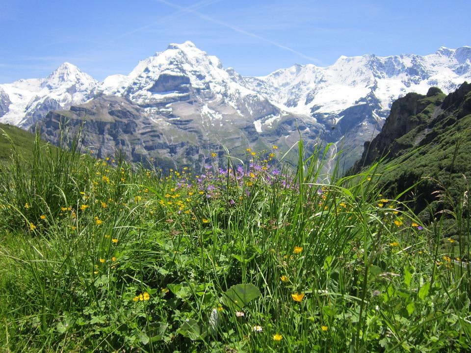 Swiss, Alps, Alpine, Mountain, Landscape, Travel, View