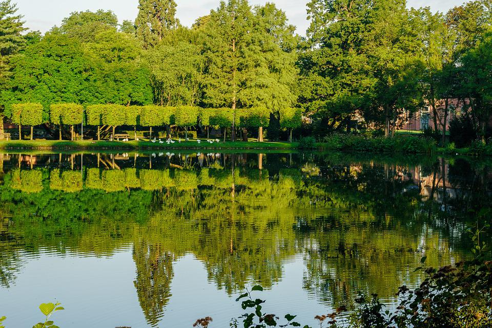 Lake, Mirroring, Trees, Water, Landscape, Nature