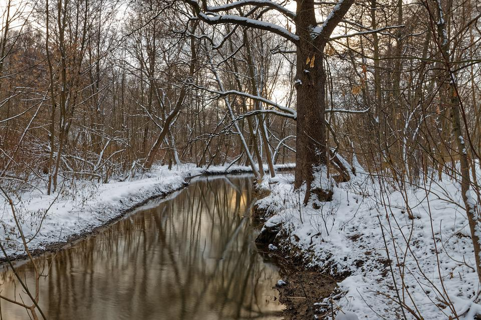 Winter, River, Beach, Water, Nature, Landscape, Trees