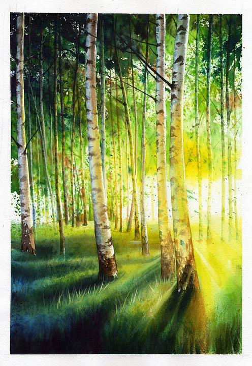 White Birch, Baekjunseung, Landscape