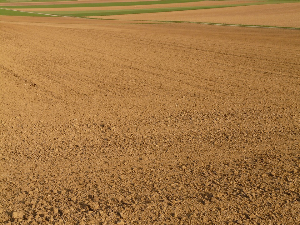 Field, Arable, Agriculture, Wide, Landscape, Nature