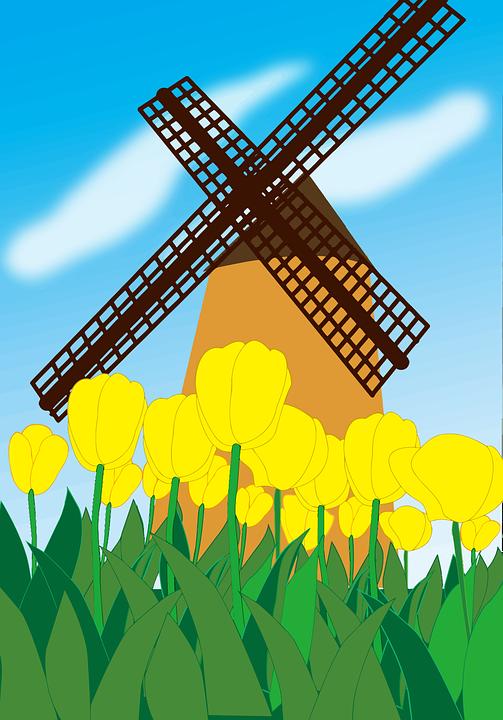 Floral, Landscape, Scene, Tulips, Flowers, Windmill