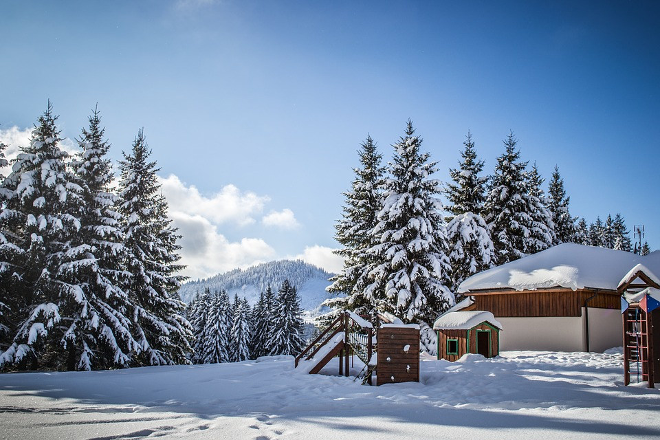 Winter, Snow, Snowy, Landscape, White