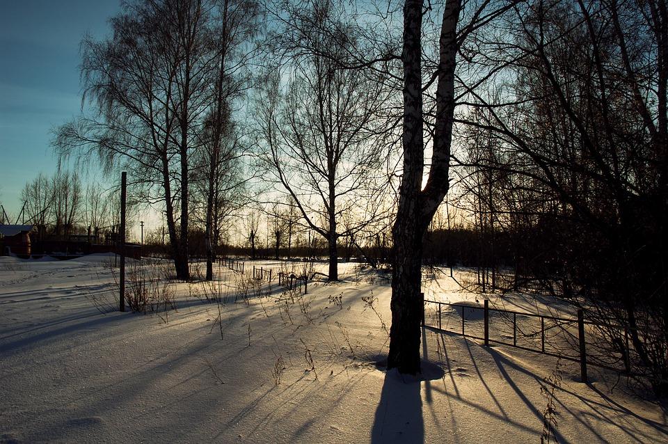 Winter, Snow, Sunset, Winter Sunset, Landscape, Trees