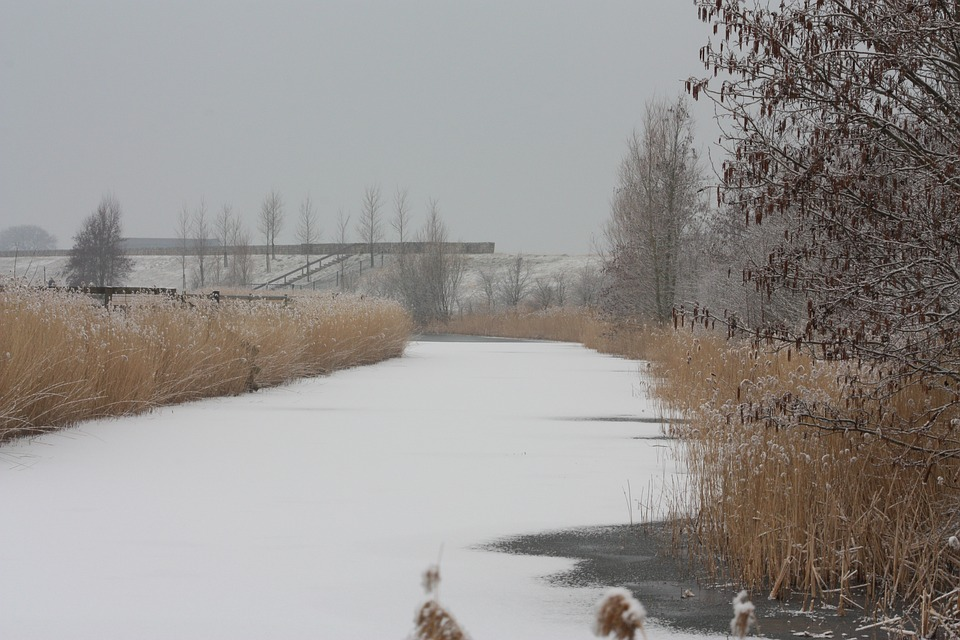 Landscape, Snow, Winter, Winter Landscape, Water, River