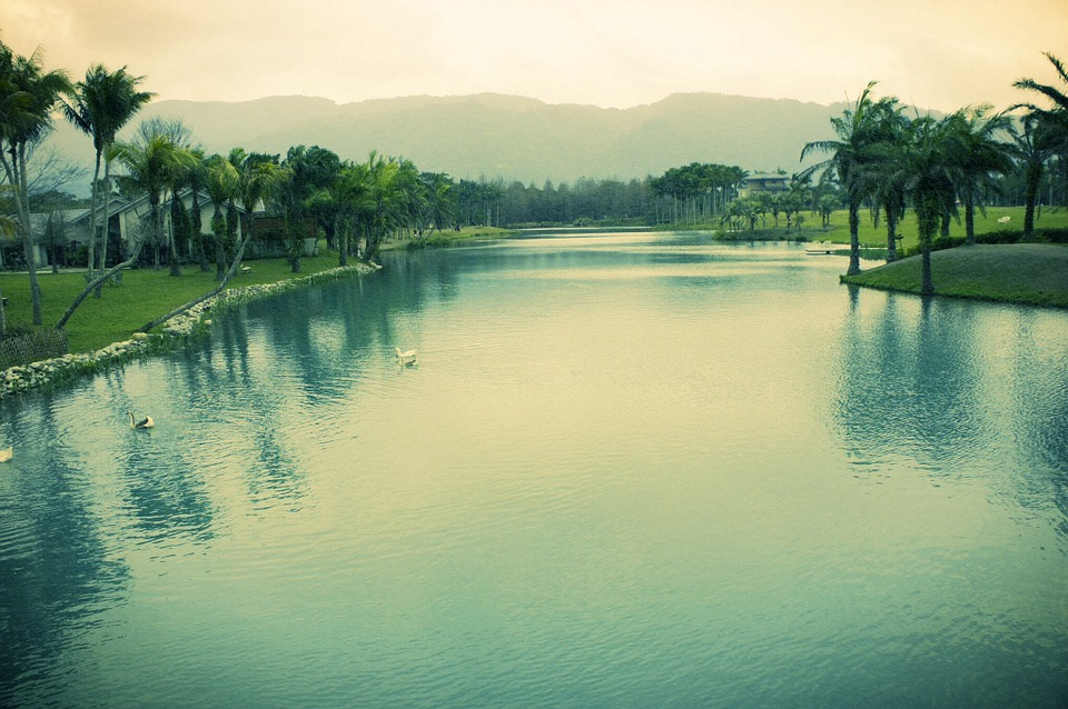 Whater, Pond, Lanscape, Photography, Lomography
