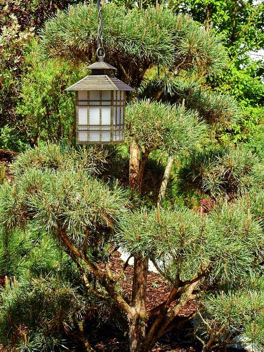 Japan, Garden Japanese Garden, Lantern, Light, Lamp