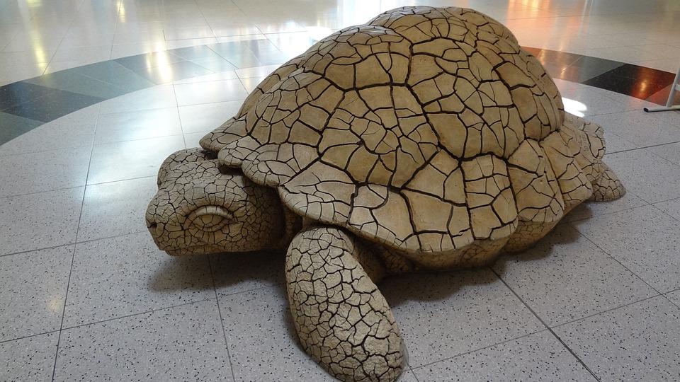 Turtle, Las Vegas, Airport, Sculpture
