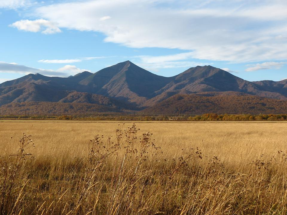 Fields, Late Autumn, Grass, Mountains, Forest, Nature