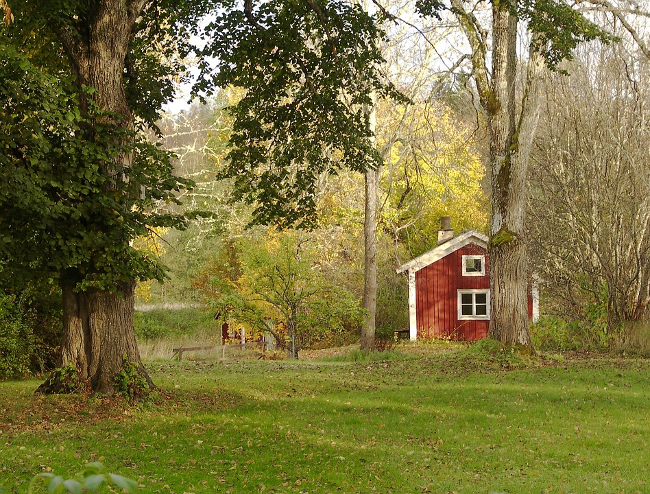 Autumn, Red Cottage, Lawn, Green, Tree Trunk