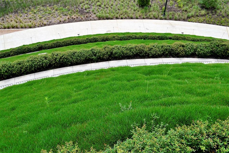 Superbe Botanical Garden, Houston Texas, Grassland, Lawn