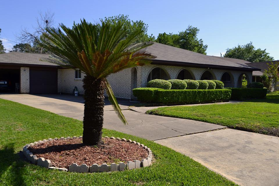 Tree, Lawn, Grass, House, Outdoors, Garden, Property