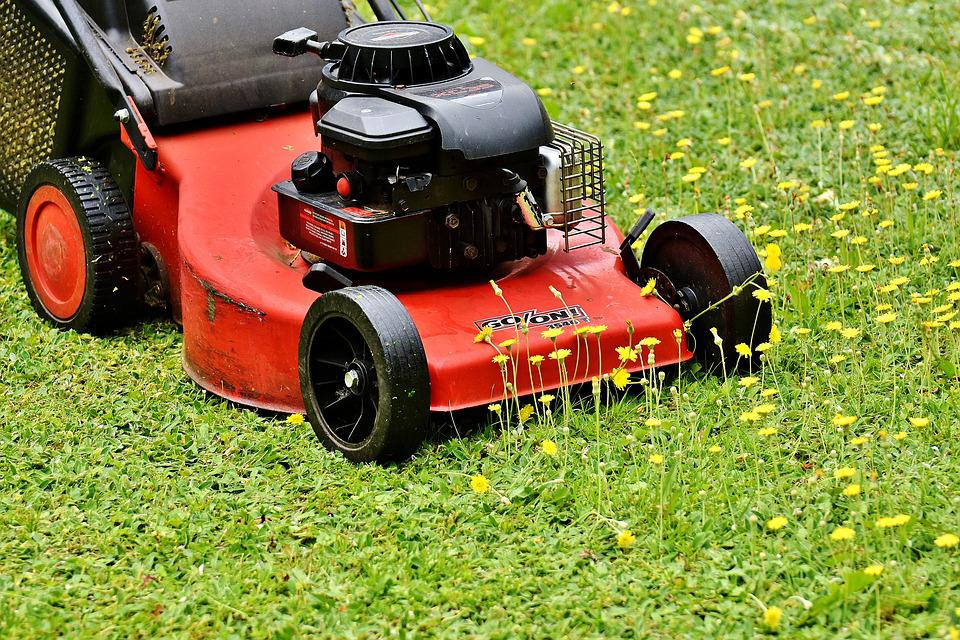 Lawn Mower, Mow, Lawn Mowing, Green, Meadow, Gardening