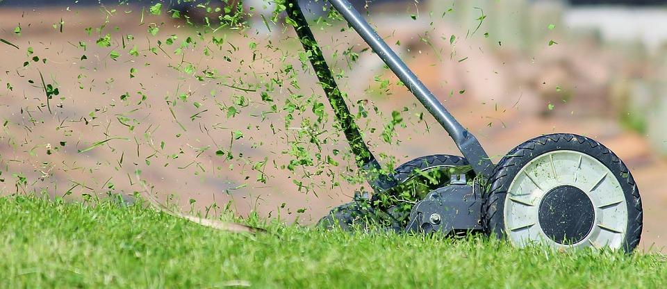 Lawn Mower, Hand Lawn Mower, Lawn Mowing, Mow, Meadow