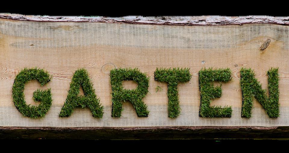 Garden, Rush, Shield, Board, Grass, Green, Mow, Lawn