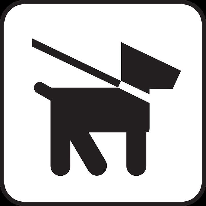 Dog, Dog Leash, Lead, Leash, Symbol, Sign, Icon